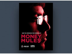 moneymules